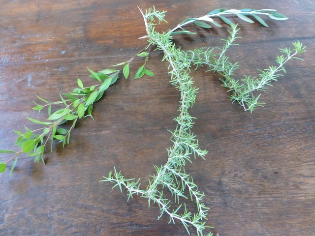 sprigs of greenery to garnish platters of food