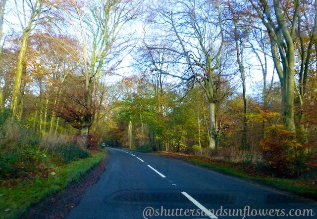English Lane, Highmoor, near Henley-on-Thames, Oxfordshire, England