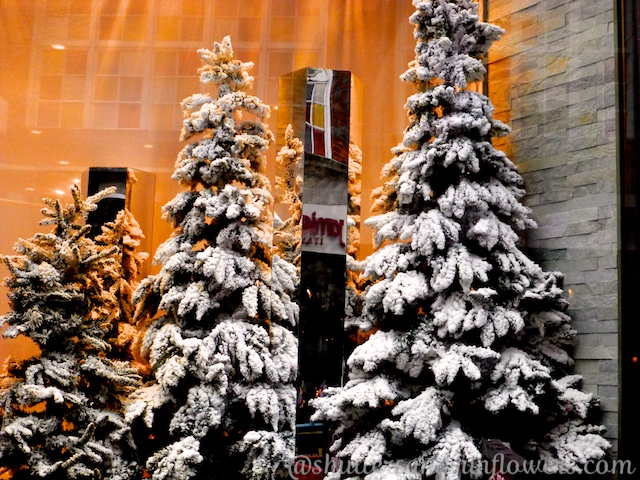 Christmas window in London