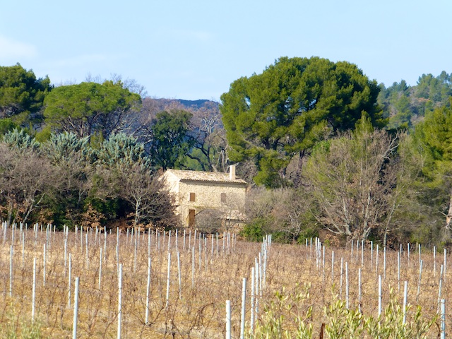 A Provencal Mas in Lourmarin across the vines