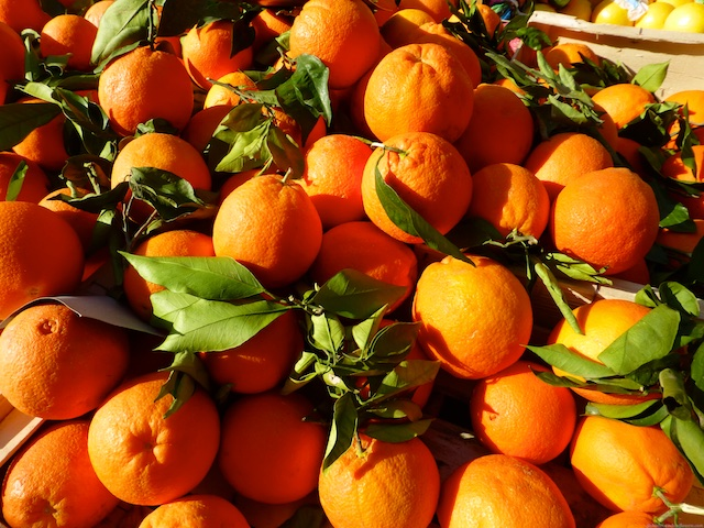 Oranges for sale in the market of Aix-en-Provence