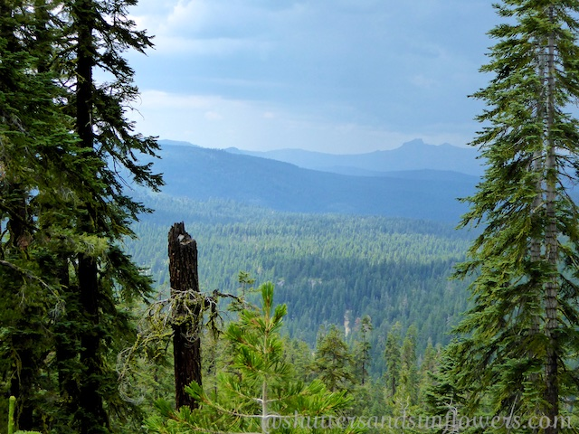 Views across the Sierras on the Tahoe Rim Trail, California