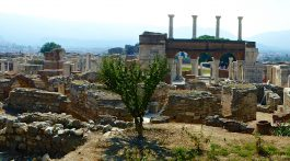 View over Basilica of St John near Ephesus,Turkey