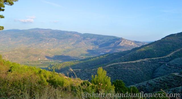 Lush hillsides full of crops near Ephesus, Turkey