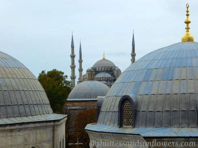 View of the Hagia Sophia Domes and the Blue Mosque, Istanbul, Turkey