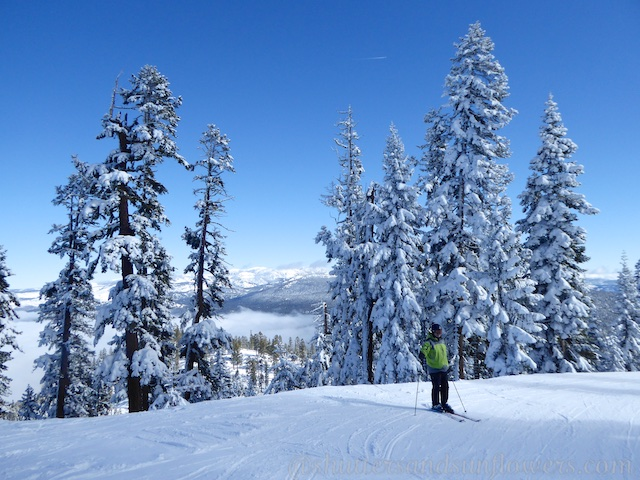 Look Out Mountain, Northstar, Lake Tahoe, California, USA