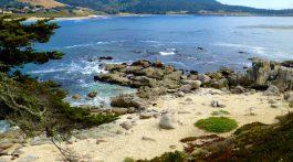 Carmel-by-the-Sea, California, USA Travel Guide PDF