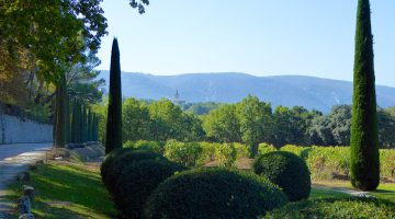 Chateau Canorgue, Bonnieux, Luberon, Provence, film location for 'A Good Year'