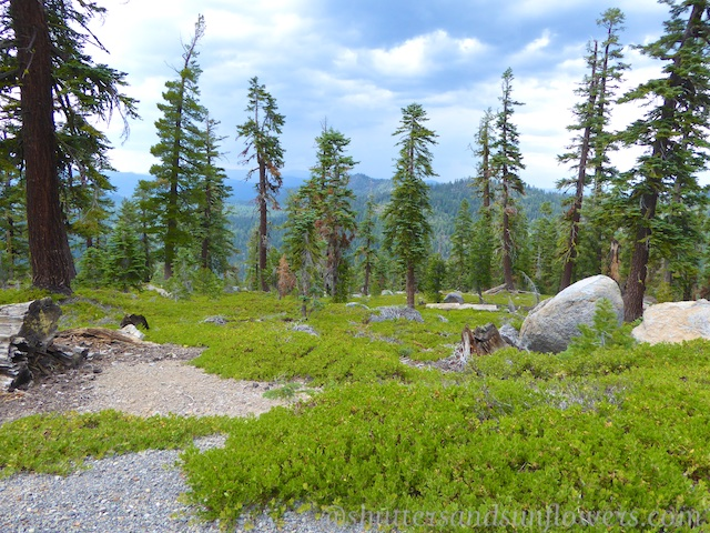 Lake Tahoe, California, hiking, PDF Travel Guide
