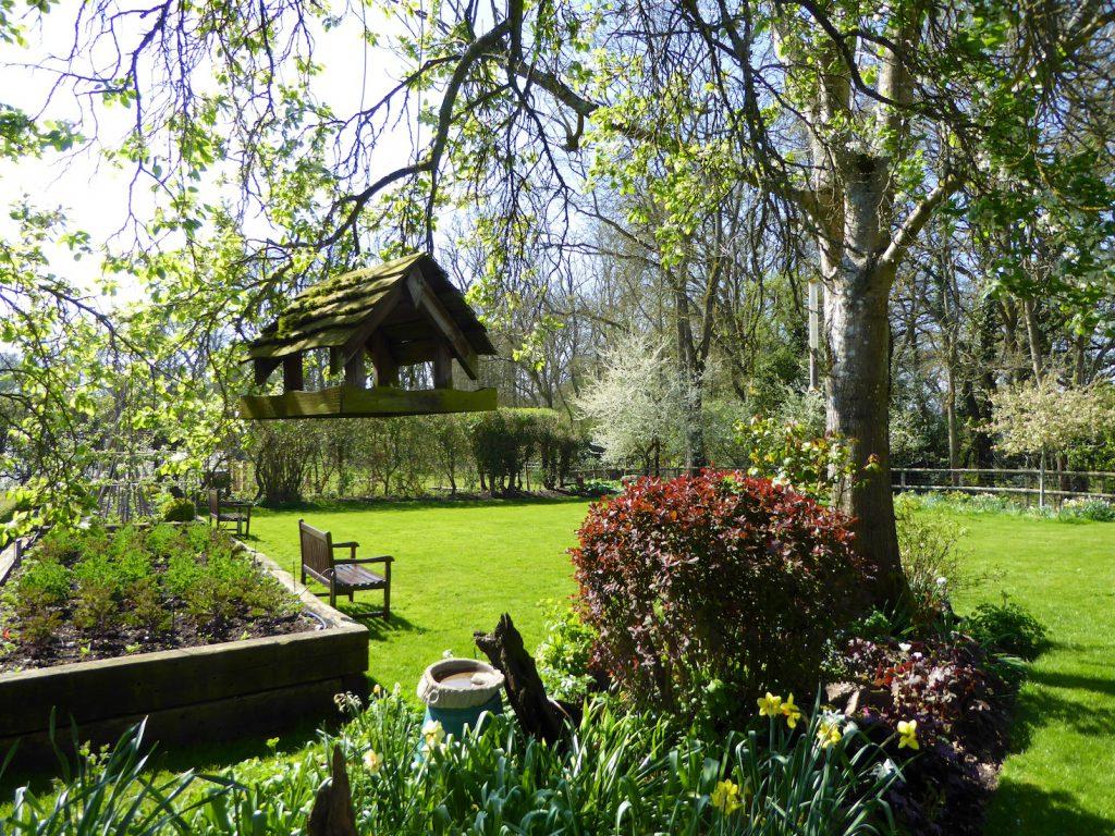 Springtime in England, an English spring garden