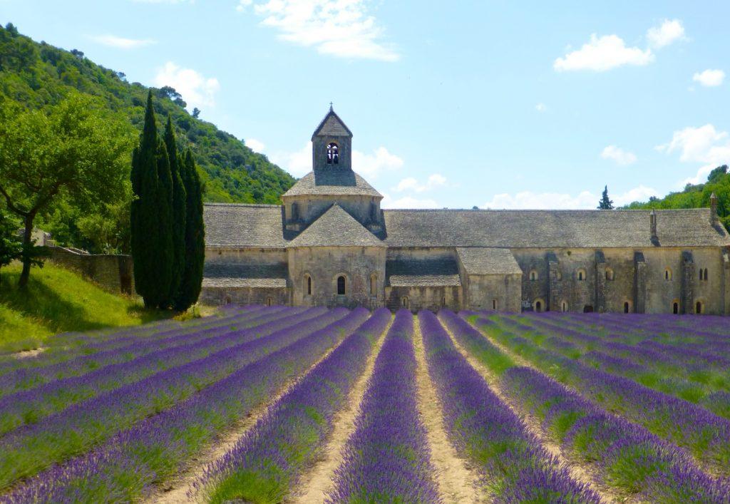 Lavender fields by Lavender at l'Abbaye Notre-Dame de Sénanque, Provence, France