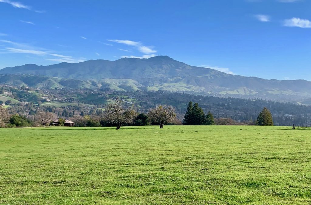 View of Mt Diablo, Danville, California