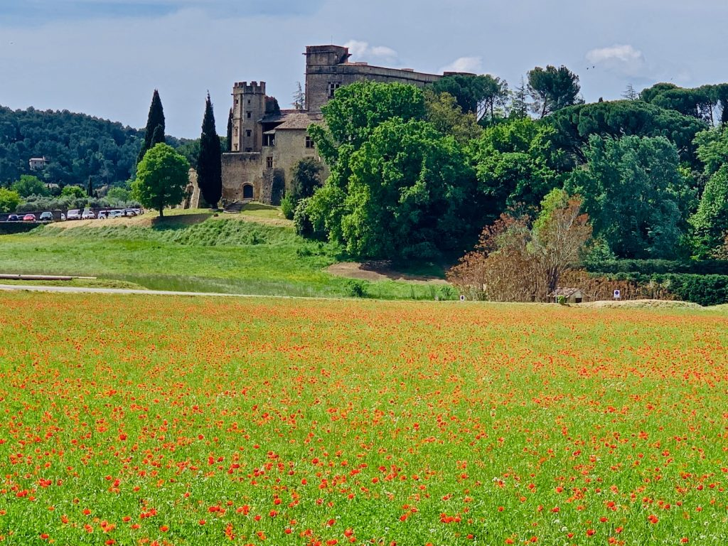 Poppies by the Château in Lourmarin