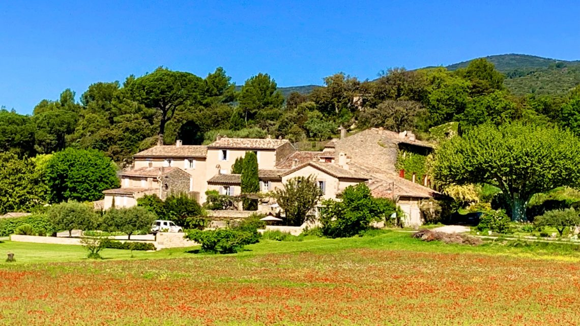 The story of the poppies, in Provence and elsewhere