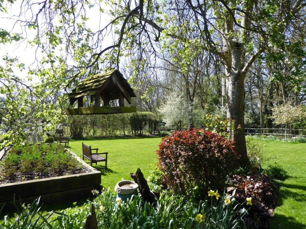 English garden in spring