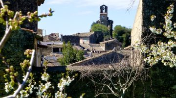 Spring blossoms in Lourmarin