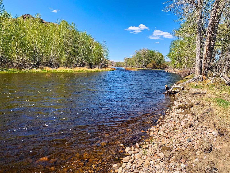 Bighole River, Melrose, Montana, USA