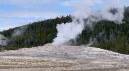 Old Faithful Geyser at Yellowstone
