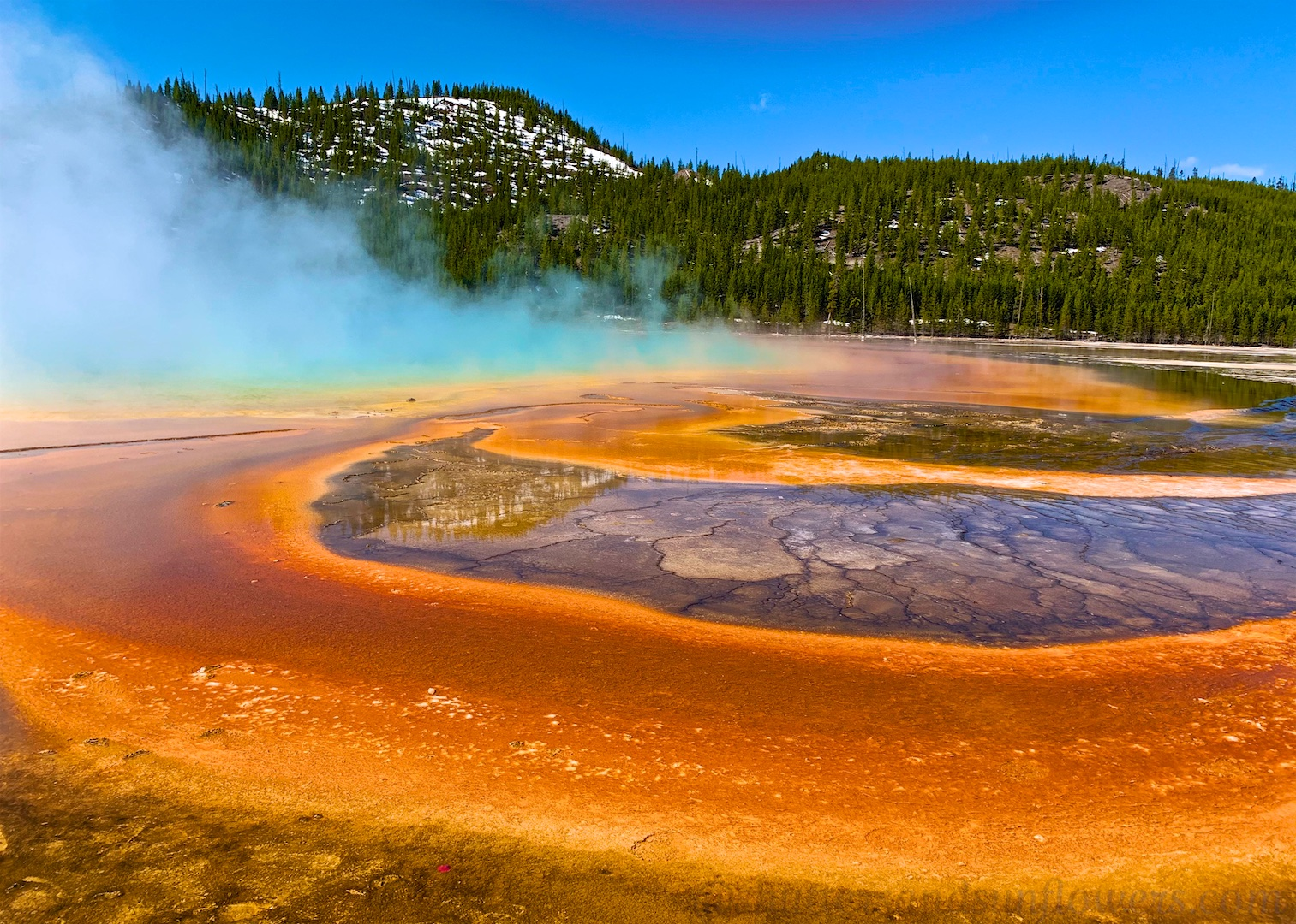 The colors by the Grand Prismatic Spring, Yellowstone National Park, USA